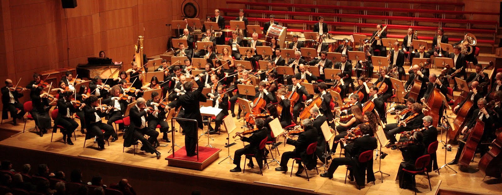 Da vivaldi a rolla stagione di musica classica a frosinone for Musica classica