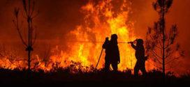 Emergenza incendi, interrogazione urgente