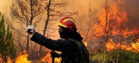 Emergenza incendi-'Vigili del Fuoco dimenticati'