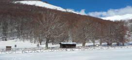 Neve a Prato di Campoli, circa mezzo metro