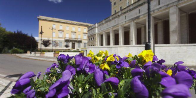 'Adotta un vaso' a Frosinone, più verde in città