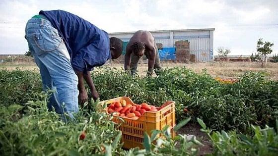 Lavoro nero, in Italia 1,5 milioni di persone