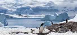 Antartide, si stacca un altro iceberg gigante