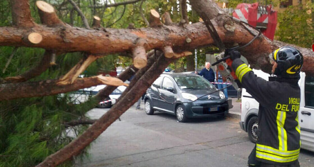 Tragedia in Ciociaria, morti schiacciati da un albero