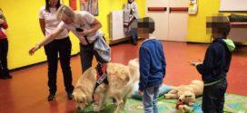 Pet Therapy a scuola, laboratorio in Ciociaria